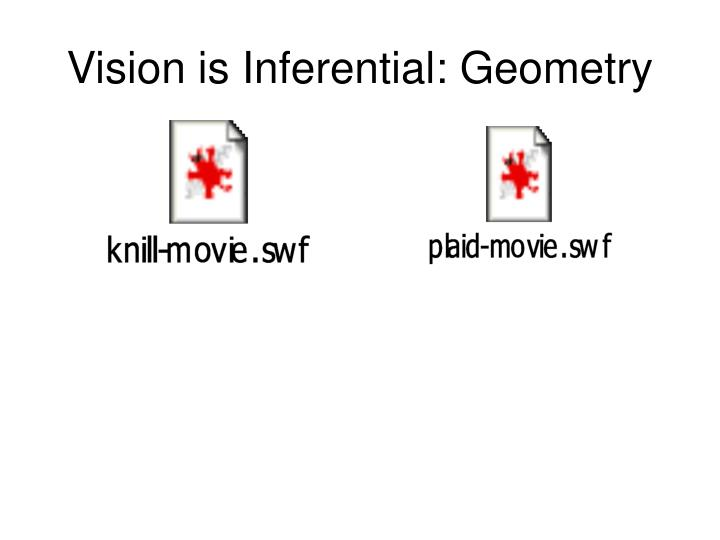Vision is Inferential: Geometry