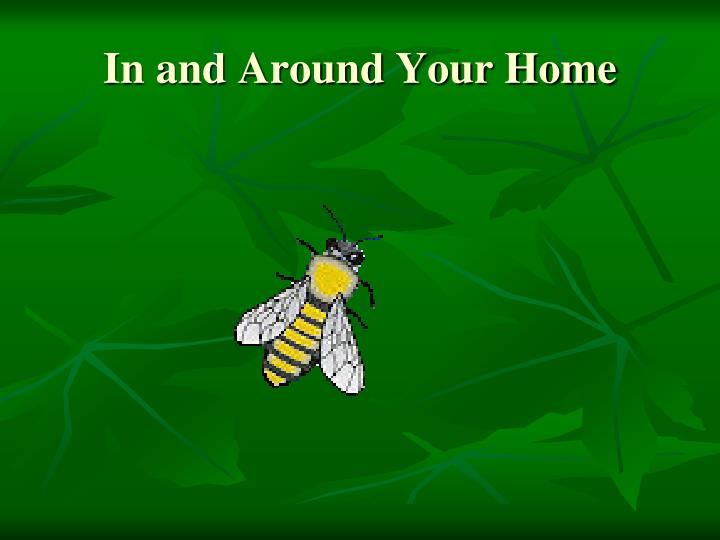 In and Around Your Home