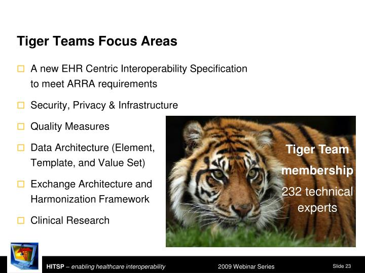 Tiger Teams Focus Areas