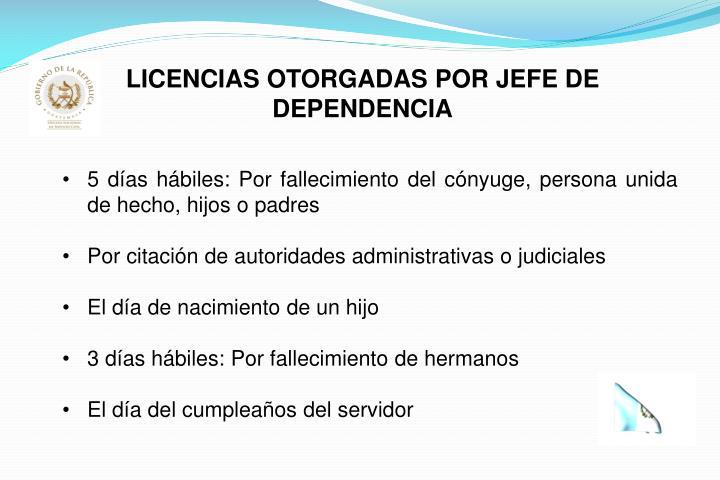 LICENCIAS OTORGADAS POR JEFE DE DEPENDENCIA