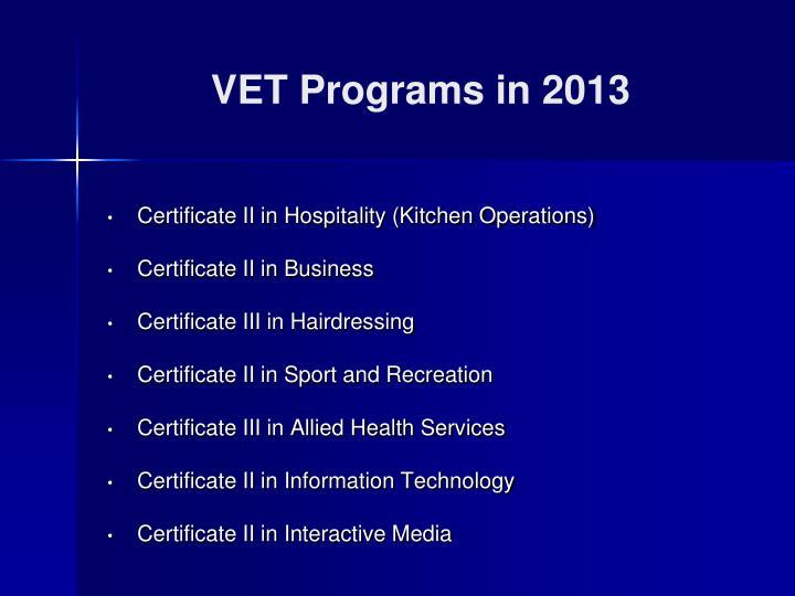 VET Programs in 2013