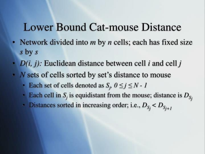 Lower Bound Cat-mouse Distance