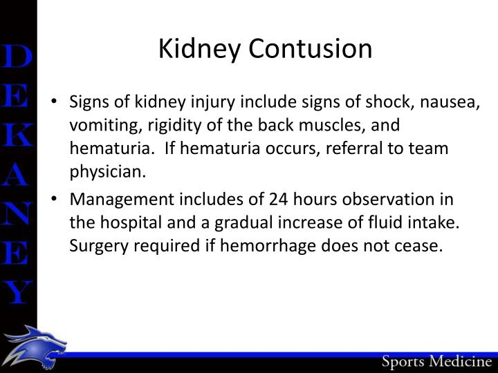 Kidney Contusion