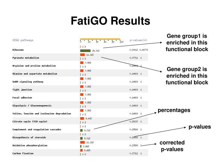 FatiGO Results