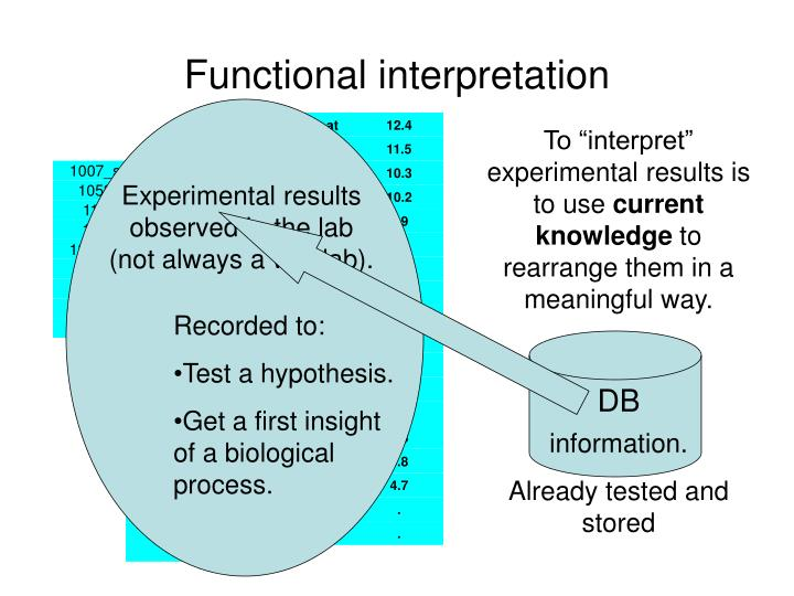 Functional interpretation