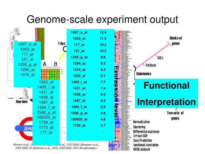 Genome-scale experiment output