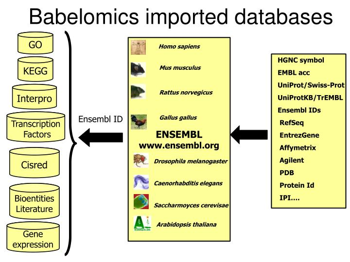 Babelomics imported databases