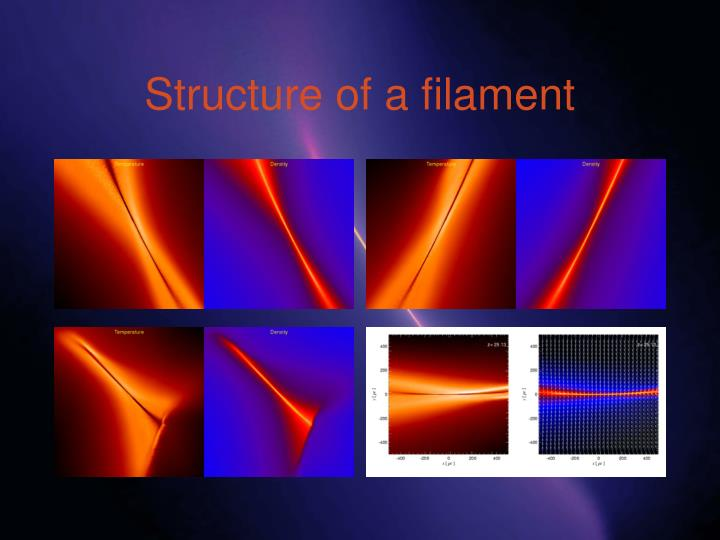 Structure of a filament