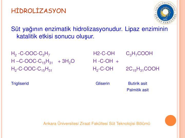HDROLZASYON
