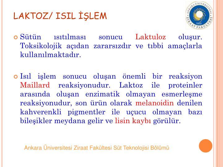 LAKTOZ/ ISIL LEM