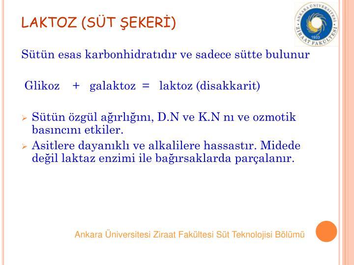 LAKTOZ (ST EKER)