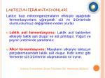 laktozun fermantasyonlari