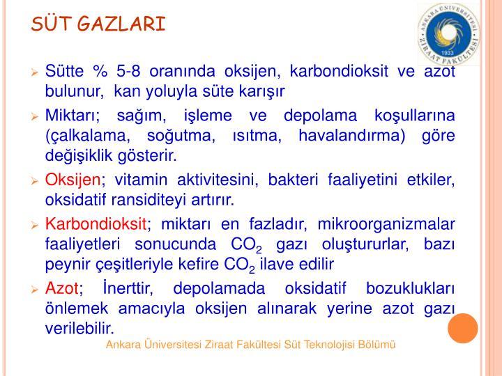 ST GAZLARI