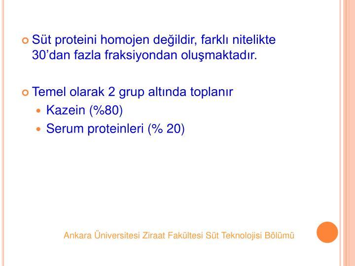 St proteini homojen deildir, farkl nitelikte 30dan fazla fraksiyondan olumaktadr.