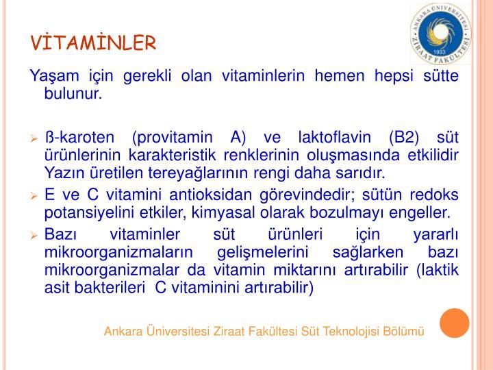 VTAMNLER