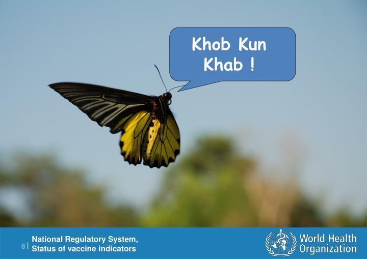 Khob Kun Khab !