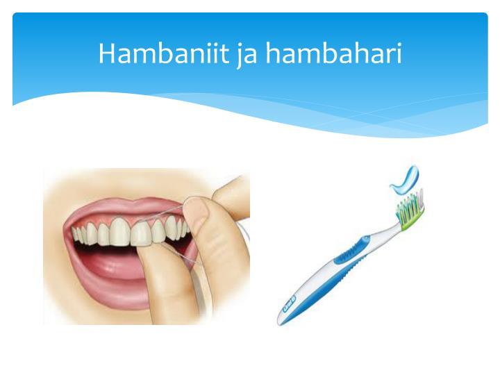 Hambaniit ja hambahari