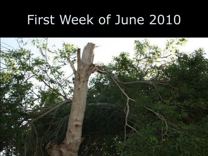 First Week of June 2010