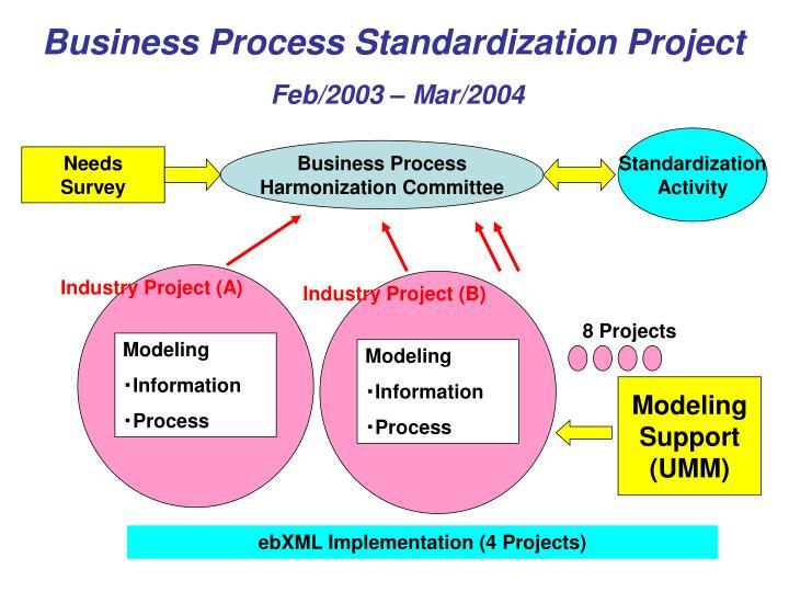 Business Process Standardization Project
