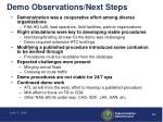 demo observations next steps