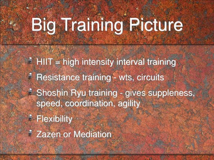 Big Training Picture