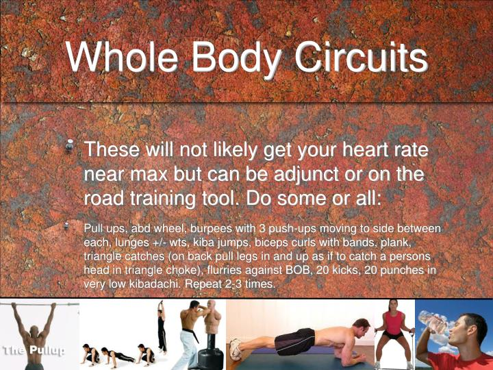 Whole Body Circuits