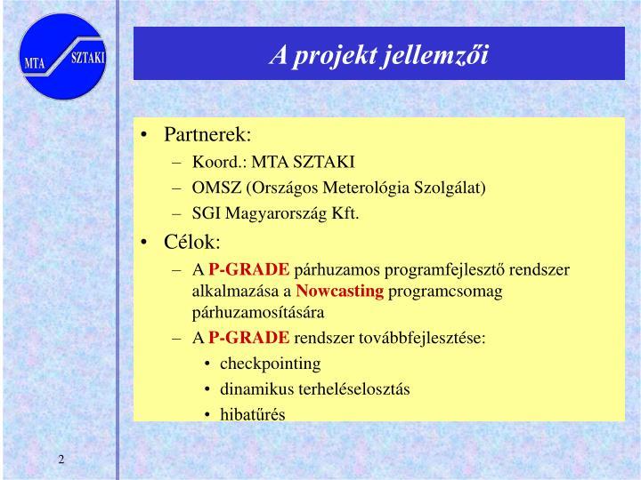 A projekt jellemzői