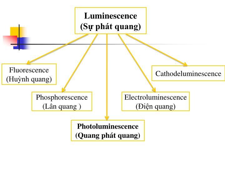Luminescence (Sự phát quang)