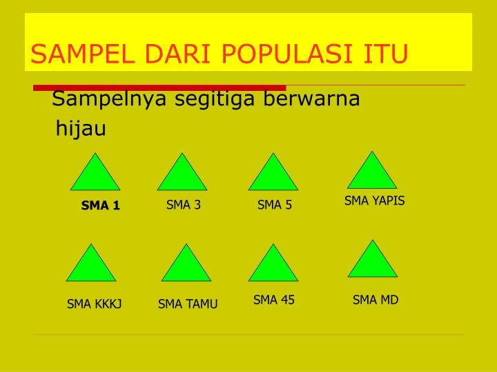 SAMPEL DARI POPULASI ITU