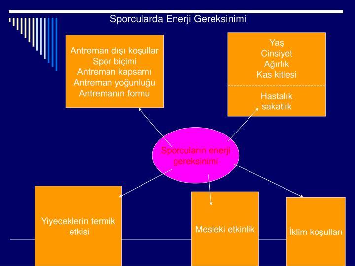 Sporcularda Enerji Gereksinimi