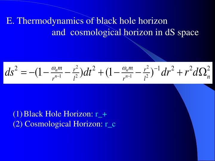 E. Thermodynamics of black hole horizon
