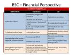 bsc financial perspective