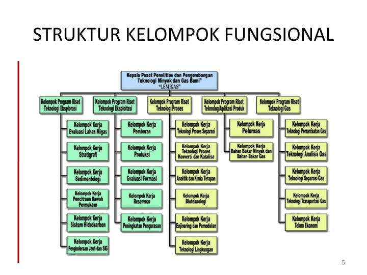 STRUKTUR KELOMPOK FUNGSIONAL
