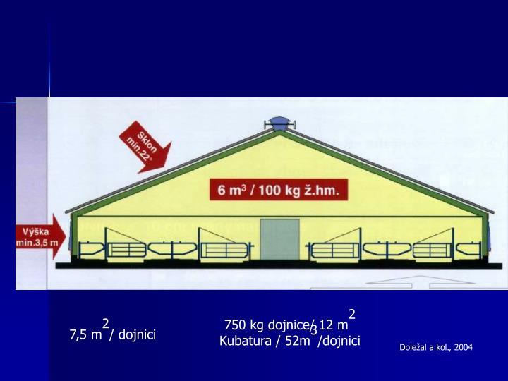 750 kg dojnice/ 12 m