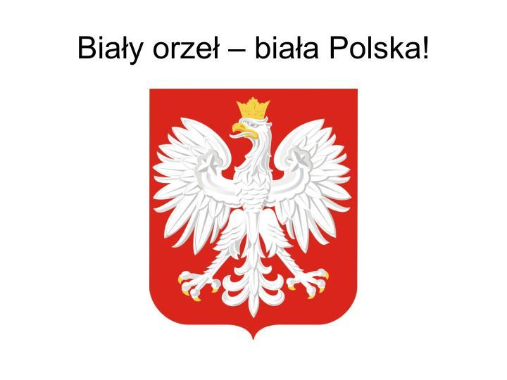 Biały orzeł – biała Polska!