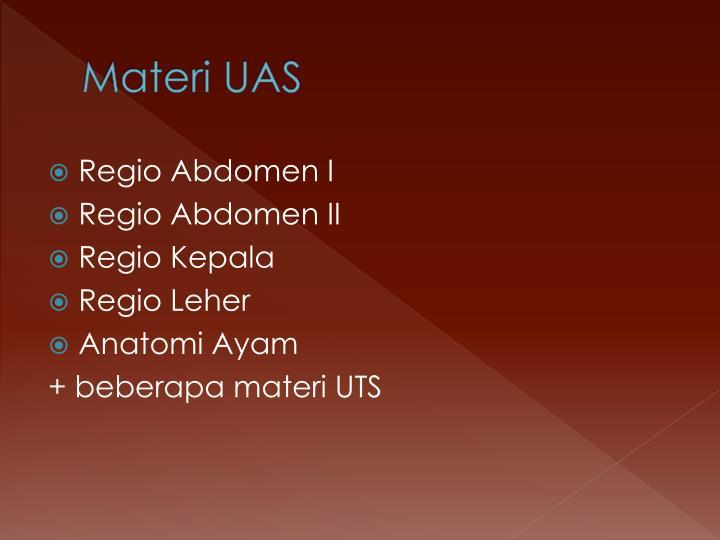 Materi UAS