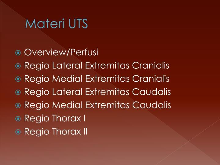 Materi UTS
