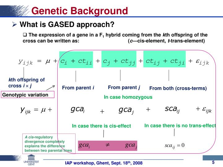 Genetic Background