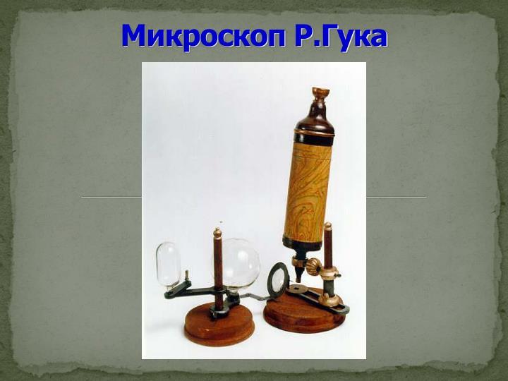 Микроскоп Р.Гука