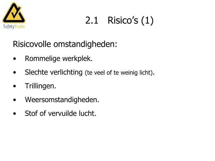 2.1   Risico's (1)