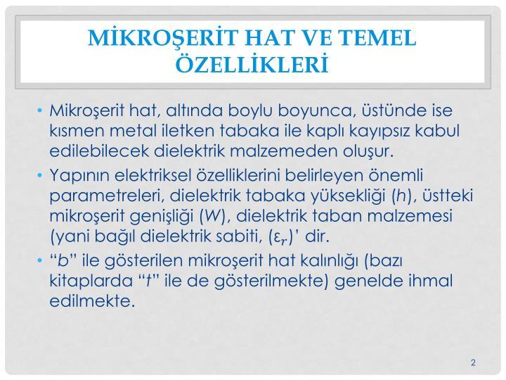 Mİkroşerİt