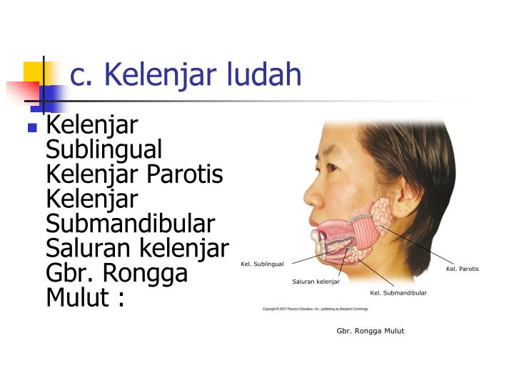 Kel. Sublingual