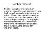 sumber mineral