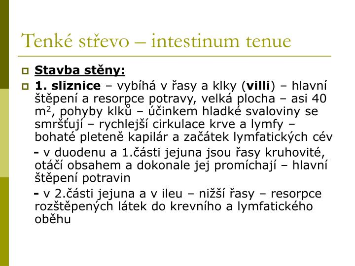 Tenké střevo – intestinum tenue
