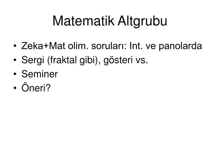 Matematik Altgrubu