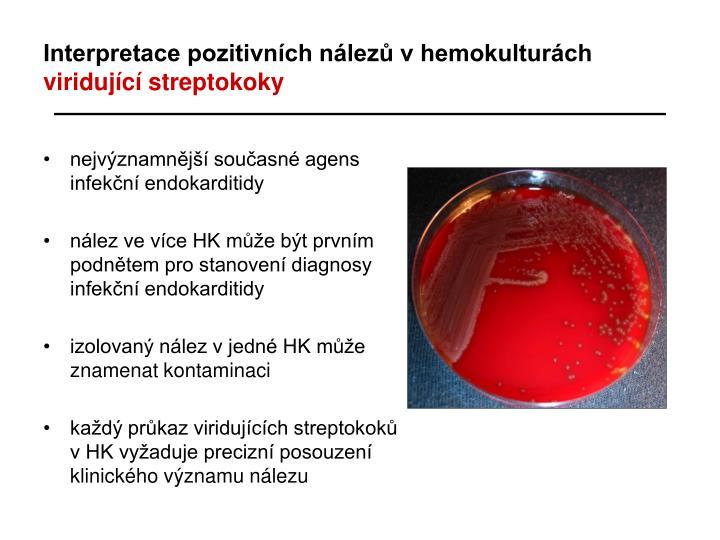Interpretace pozitivních nálezů v hemokulturách