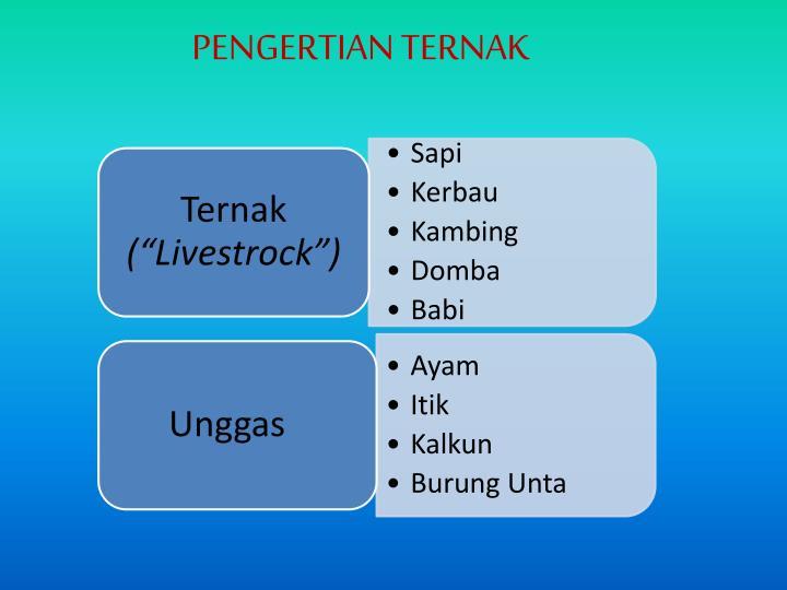 PENGERTIAN TERNAK
