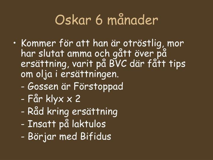 Oskar 6 månader