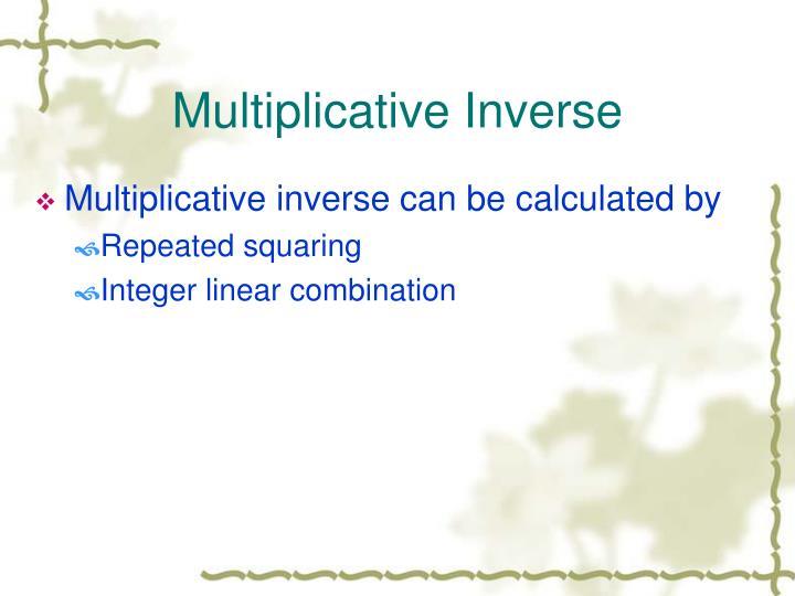 Multiplicative Inverse