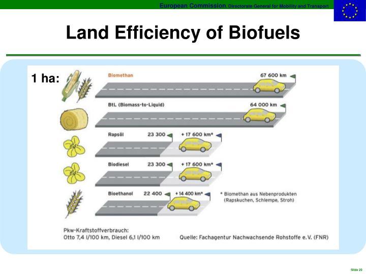 Land Efficiency of Biofuels